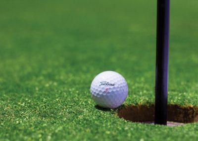 A spot of golf